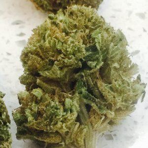 White Widow CBD Flower Buds