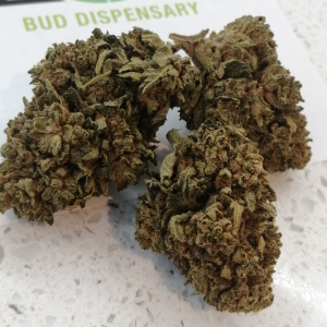 CBD Pineapple Crush Bud