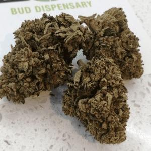 CBD Pineapple Crush Bud